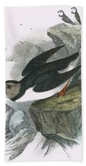 Puffin Hand Towel by English School