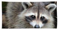 Raccoon Eyes Hand Towel by Carol Groenen