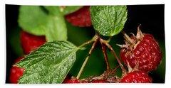 Raspberries Hand Towel by Nikolyn McDonald