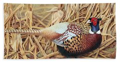 Ring-necked Pheasant Hand Towel by Ken Everett