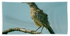 Roadrunner Out On A Limb Hand Towel by Robert Frederick