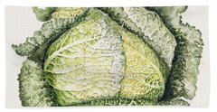 Savoy Cabbage  Hand Towel by Alison Cooper