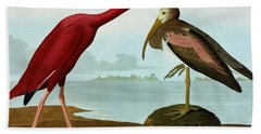 Scarlet Ibis Hand Towel by John James Audubon