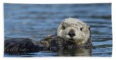 Sea Otter Alaska Hand Towel by Michael Quinton
