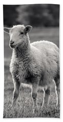 Sheep Art  Hand Towel by Lucid Mood
