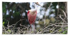 Spoonbill In The Branches Hand Towel by Carol Groenen