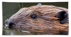 The Beaver Square Hand Towel by Bill Wakeley