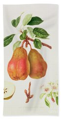 The Chaumontelle Pear Hand Towel by William Hooker