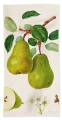 The D'auch Pear Hand Towel by William Hooker