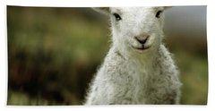 The Lamb Bath Towel by Angel  Tarantella
