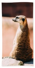 The Lonely Meerkat Hand Towel by Pati Photography