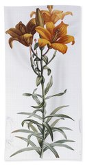 Tiger Lily Hand Towel by Pierre Joseph Redoute