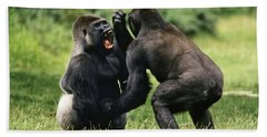 Western Lowland Gorilla Males Fighting Hand Towel by Konrad Wothe
