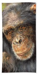 Wise Eyes Hand Towel by David Stribbling