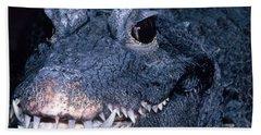 African Dwarf Crocodile Hand Towel by Dante Fenolio