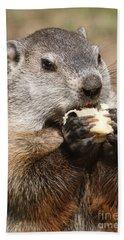 Animal - Woodchuck - Eating Hand Towel by Paul Ward