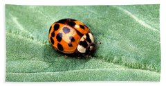 Asian Multicolored Lady Beetle Hand Towel by Science Source