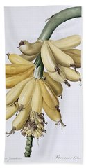 Banana Hand Towel by Pierre Joseph Redoute