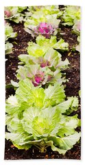 Cabbages Hand Towel by Tom Gowanlock