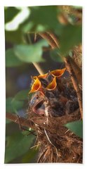 Feeding Time Hand Towel by Joann Vitali