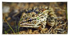 Frog Hand Towel by Elena Elisseeva