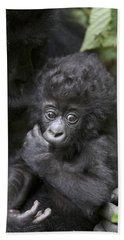 Mountain Gorilla 3 Month Old Infant Hand Towel by Suzi Eszterhas
