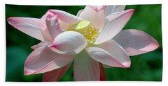 Pink Attraction Hand Towel by LeeAnn McLaneGoetz McLaneGoetzStudioLLCcom