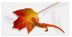 Red Spotted Newt Hand Towel by Ron Jones