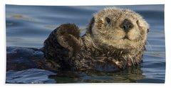 Sea Otter Monterey Bay California Hand Towel by Suzi Eszterhas