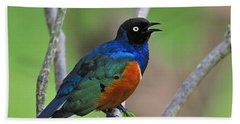 Superb Starling Hand Towel by Tony Beck