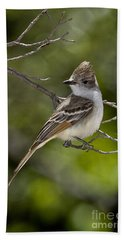 Ash-throated Flycatcher Hand Towel by Anthony Mercieca