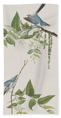 Blue Grey Flycatcher Hand Towel by John James Audubon
