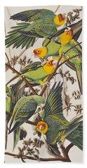Carolina Parrot Hand Towel by John James Audubon