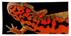Chuxiong Fire Belly Newt Hand Towel by Dant� Fenolio