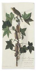 Traill's Flycatcher Hand Towel by John James Audubon