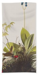 Wood Wren Hand Towel by John James Audubon
