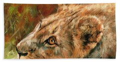 Young Lion Hand Towel by David Stribbling