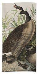 Canada Goose Hand Towel by John James Audubon