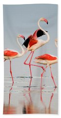 Greater Flamingos Phoenicopterus Roseus Hand Towel by Panoramic Images