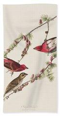 Purple Finch Hand Towel by John James Audubon