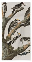 Woodpeckers Hand Towel by John James Audubon