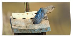 Spread Your Wings Hand Towel by Mike Dawson