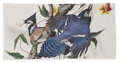 Blue Jay Hand Towel by John James Audubon