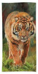 Amur Tiger Hand Towel by David Stribbling