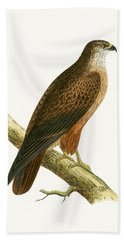 African Buzzard Hand Towel by English School