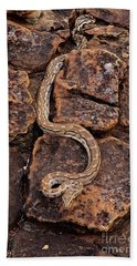 African Rock Python Hand Towel by John Cancalosi