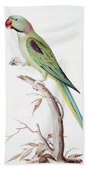 Alexandrine Parakeet Hand Towel by Nicolas Robert