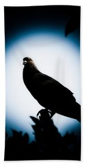 Astral Pigeon Hand Towel by Loriental Photography