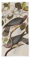 Band-tailed Pigeon  Hand Towel by John James Audubon