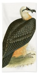 Bearded Vulture Hand Towel by English School